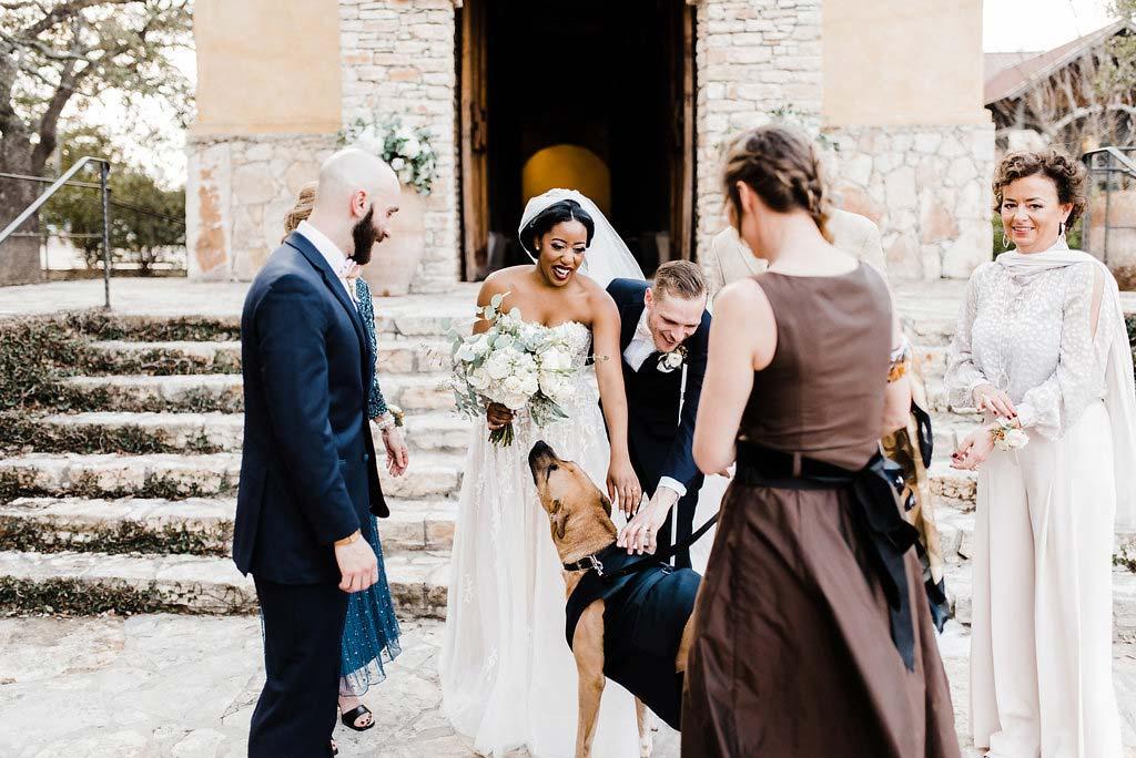 Gametime Dog Services | Wedding Day Dog Attendant