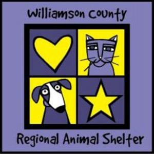 Williamson County Regional Animal Shelter Foster Program