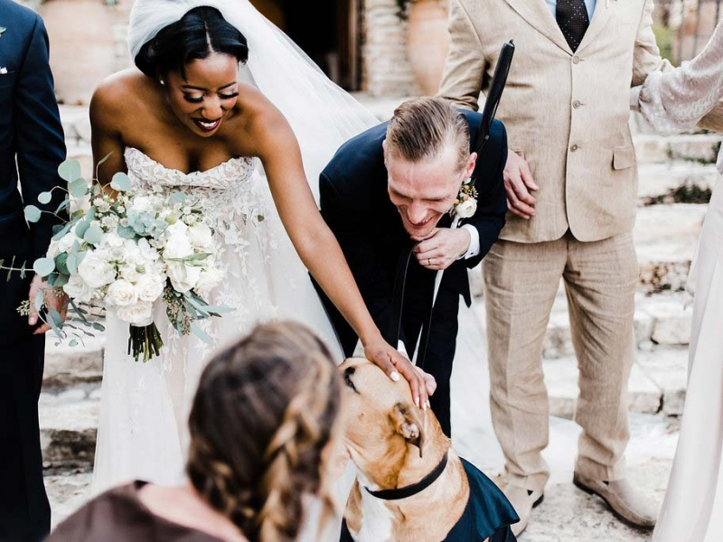 Gametime Dog Services | Wedding Day Dog Attendant
